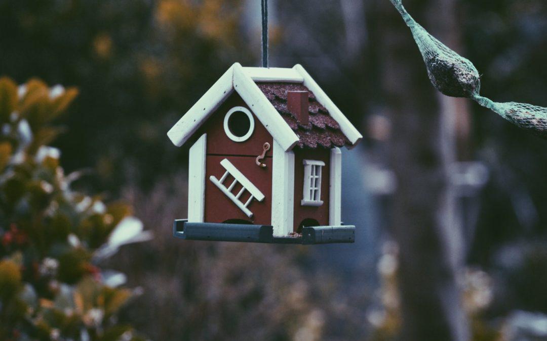 Cession immobilière : Les dispositifs fiscaux méconnus permettant l'exonération de la plus-value